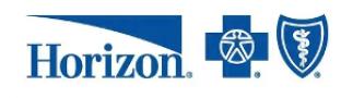 Horizon-300-1